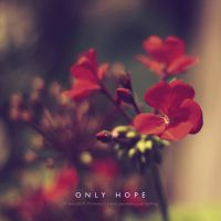 ... ONLY HOPE ... by lalitkala