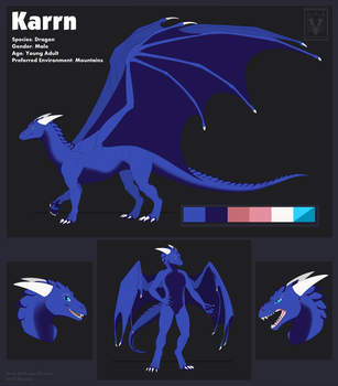 Karrn the Dragon - Referencesheet [CM] by Minerea