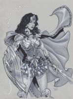 Wonder Woman in Armor by MichaelDooney