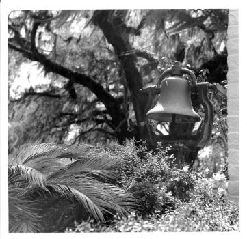 Bell at the Grove Plantation - 8x8 print by rdungan1918