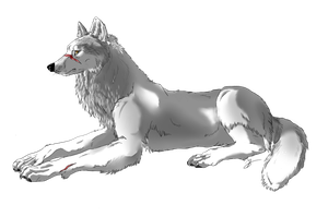 White Wolf by Mssilvs