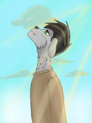 Another furry character but this time, it's a dude by BizChan123