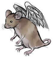 Rat with Wings by Horoko