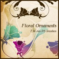 Floral Ornaments by PajkaBajka