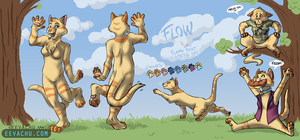 Flow Reference Sheet by Eevachu