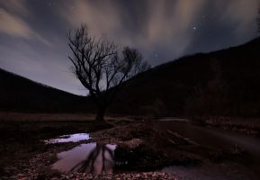 River at night by draganea