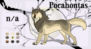 Pocahontas Character Sheet - WoLF by AnimeFan4Eternity23