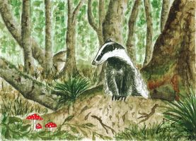 Deep in the woods (ACEO) by Woodswallow