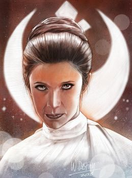 RIP Carrie Fisher. You're now the Force. by wallacedestiny