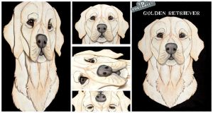 3D - Portraits: Golden Retriever by SaQe