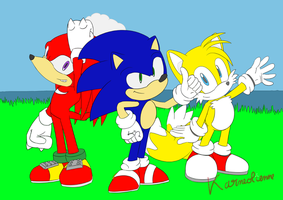 Sonic, Tails and Knuckles by Karneolienne