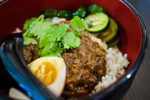 Stewed Meat Rice by feria233