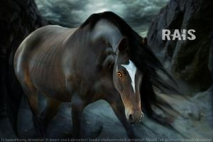 Rais by leathermoorehollow45