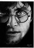HARRY POTTER by juliana7517