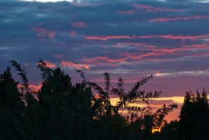 Orpington Sunset by DrHamster