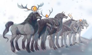 Northern Wargs by Dyemelikeasunset