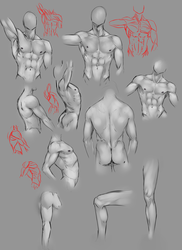 Anatomy practice .. by moni158