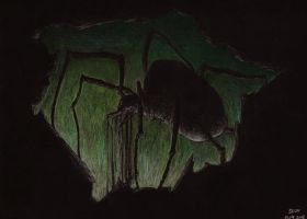 Shelob by Apelure