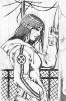 X-23 11 by Dannith