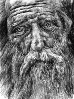 Old man with beard by KingVahagn