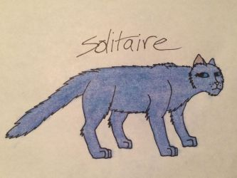 Solitaire .:Felidae:. by amber-sunsets