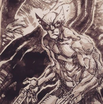 Wolverine by guillo0