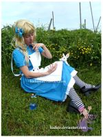 Wonderland: Alice by Kadajo