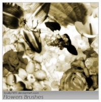 Flowers Brushes by Scully7491