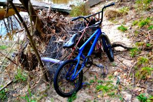 Stashed Away In The Creek by Chris2059