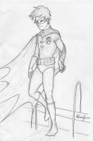 the boy wonder by burdge