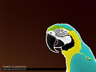 Parrot Illustration by Episoded