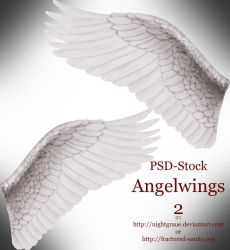 Angelswings 2 - PSD Stock by nightgraue