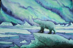Polar Bear by moroya