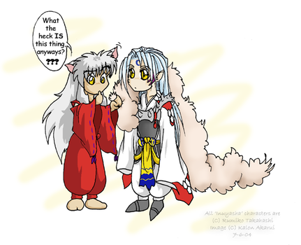 Inuyasha's Question by akarui