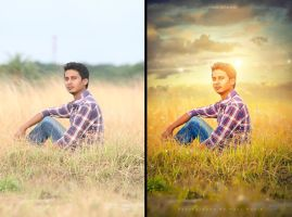 Golden Sun by hasshasib001