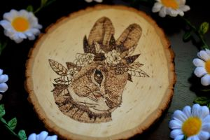 BUNNY RABBIT WOOD BURNING by aashler