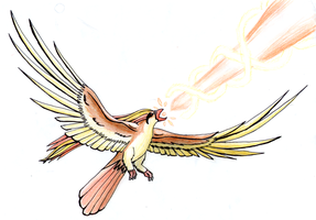 Pidgeot Hyperbeam by Ho-ohLover