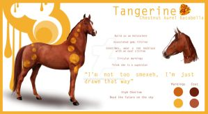 Tangerine-Bacabello by QueenOfGoldfishes