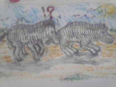 Day 26: Z - Zebra zooming zealously by Amber-Gemnia