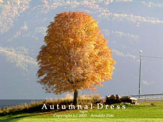 Autumnal Dress by Arnaldo-aka-Homer