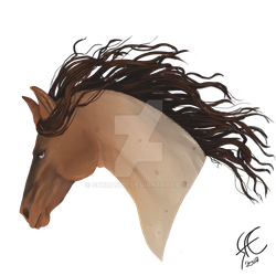 Roan Horse Head by Sunrae117