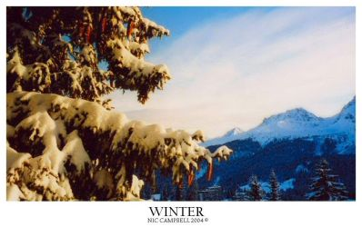 Winter by Bad-Company-101