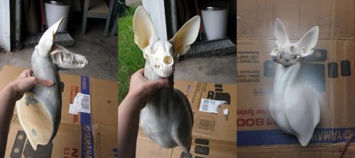 Ghost 2 WIP and how to make your own by DiamondDustTaxidermy