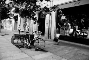 Bicycle in Serrano by Inarita