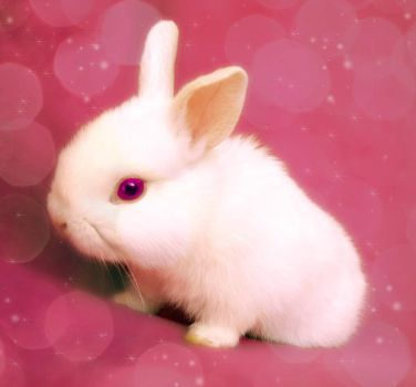 Pink bunny by soriina