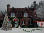 Christmas Cottage by Shirley-Agnew-Art