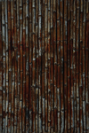TEXTURE - Bamboo Wall by CorporalNobbs