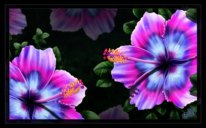 Blue and Purple Hibiscus by Dyewind