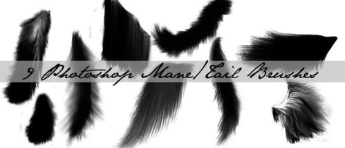 Mane+Tail Brushes by RBSRdesigns