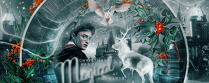 Christmas at Hogwarts by VaLeNtInE-DeViAnT